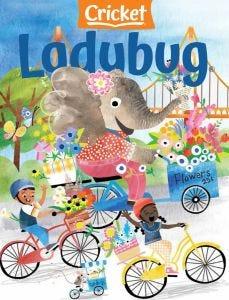 LADYBUG®
