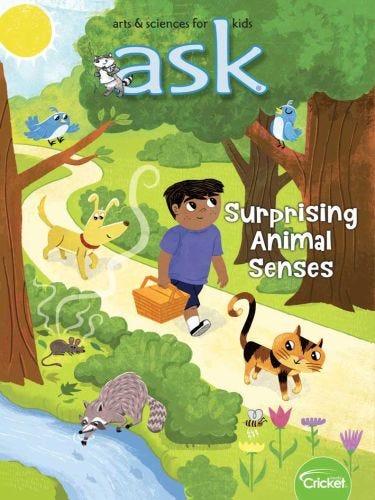 Surprising Animal Senses