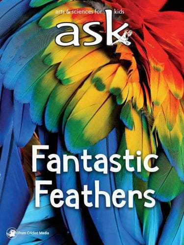 Fantastic Feathers