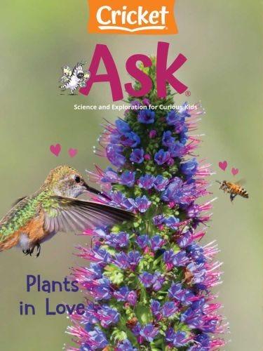 Plants in Love
