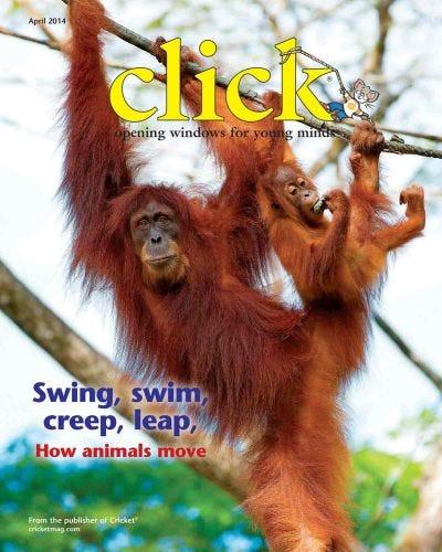 SWING, SWIM, CREEP, LEAP, HOW ANIMALS MOVE