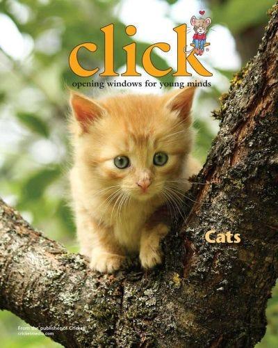 CLICK NOVEMBER 2015: Cats