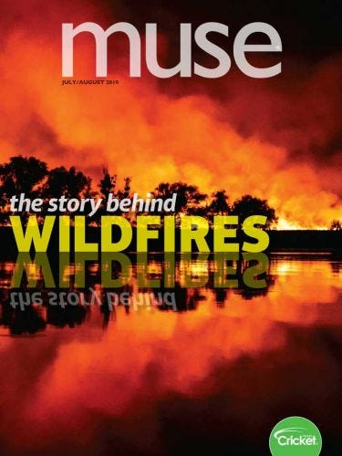 The Story Behind Wildfires