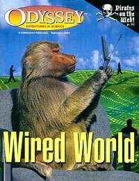 WIRED, WIRED WORLD